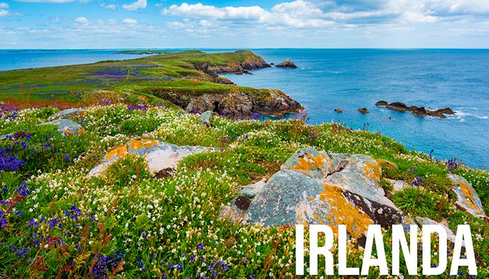 Cursos de verano para Jóvenes en Irlanda